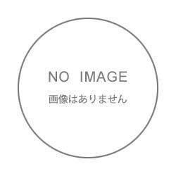 9990437sagyou3